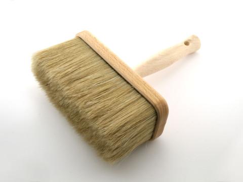 Pędzel ławkowiec /Bench paintbrush/ - t17