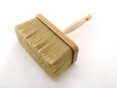 Pędzel ławkowiec /Bench paintbrush/ - t18